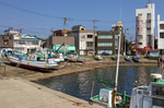 misaki.cruise05.jpg