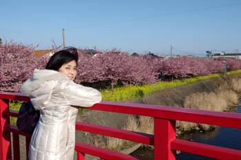 kawazu03.jpg