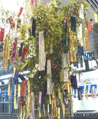 tanabata..jpg